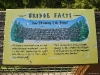 Info on Capilano Suspension Bridge, Vancouver