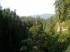View from Capilano Suspension Bridge, Vancouver